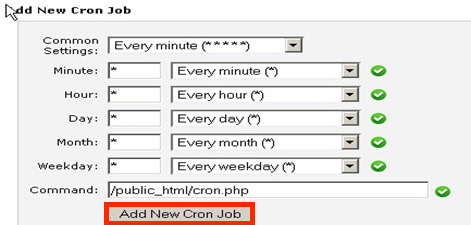 "Window highlighting the ""Add New Cron Job"" button"