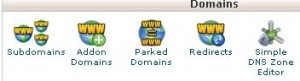 """Domains"" category within the cPanel dashboard showing the Subdomains tool"
